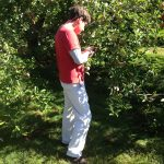 Age 17 - Apple orchard