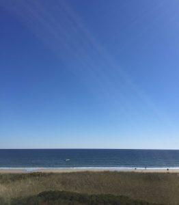 Scarborough Coast