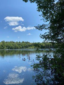 Burr Pond 2021